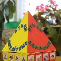 Магнитная игра «Птичий дом». Дидактическая игра для детей 5–7 лет