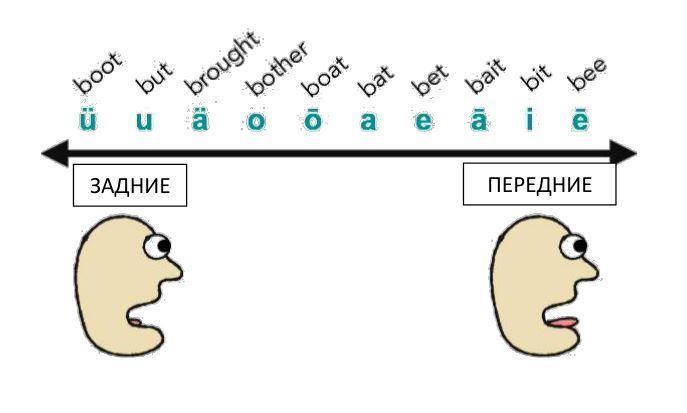 Классификация гласных