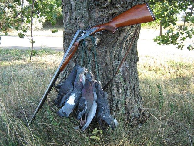 какое выбрать ружье для охоты
