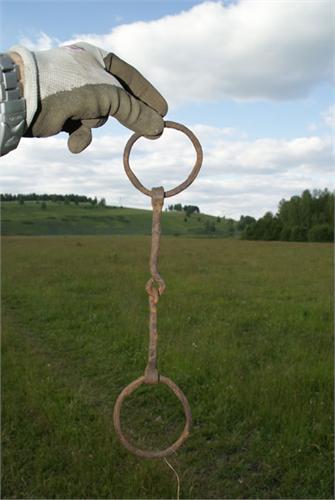 Удела. Найдены в Башкирии, Салаватский район, д.Тикеево. Июнь 2009.
