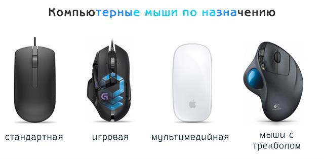 Типы компьютерных мышей по назначению