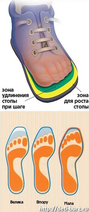 Как выбрать размер обуви ребенку