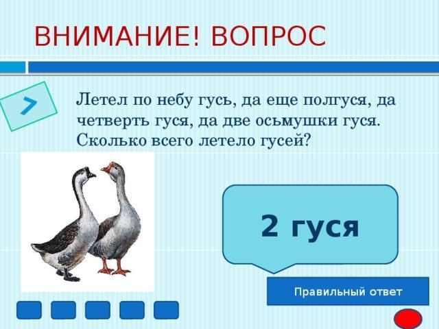 7 ВНИМАНИЕ! ВОПРОС Летел по небу гусь, да еще полгуся, да четверть гуся, да две осьмушки гуся. Сколько всего летело гусей? 2 гуся Правильный ответ