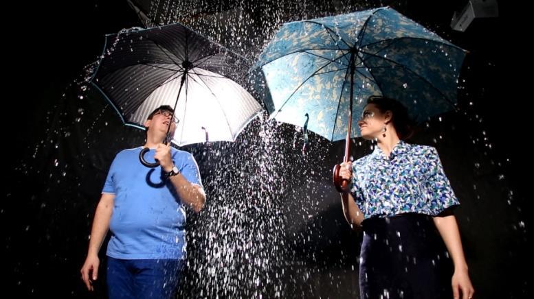 Отличия мужских и женских зонтов