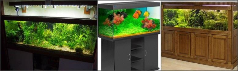 Прямоугольный аквариум