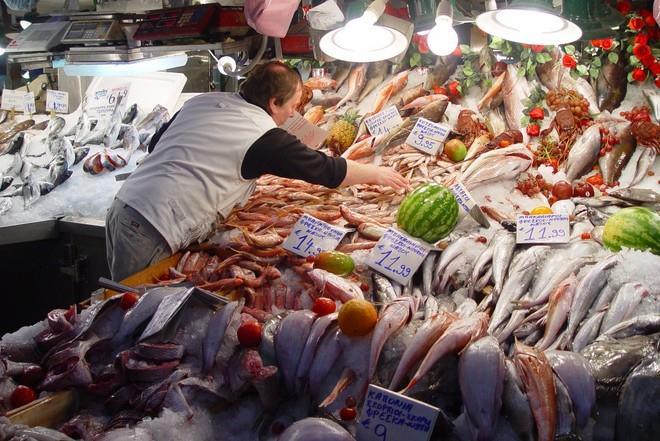 покупать рыбу сонник