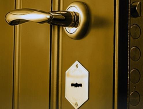 Качественные двери из стали смотрятся роскошно