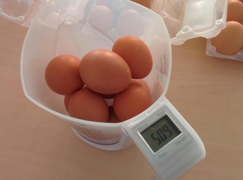Какие яйца выгоднее покупать