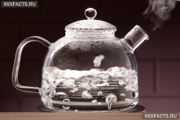 Какой купить чайник для газовой плиты – эмалированный, стеклянный, из нержавейки?
