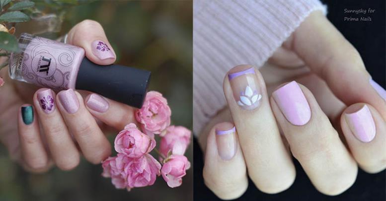 pink-lavender-kollazh.jpg