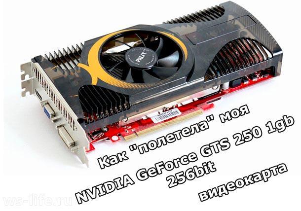 NVidia-GeForce-GTS-250-1gb-256bit