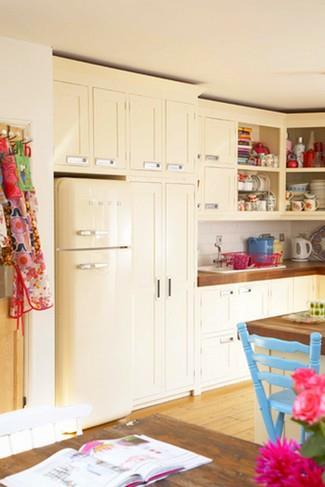 как выбирать цвет холодильника для кухни