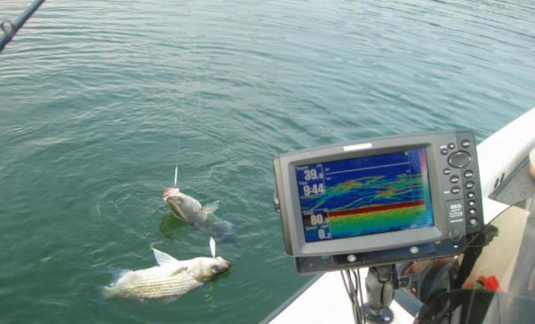 Как выбрать лучший эхолот для рыбалки?