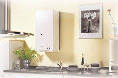 Какой котел для частного дома лучше — обзор современных напольных и настенных газовых агрегатов