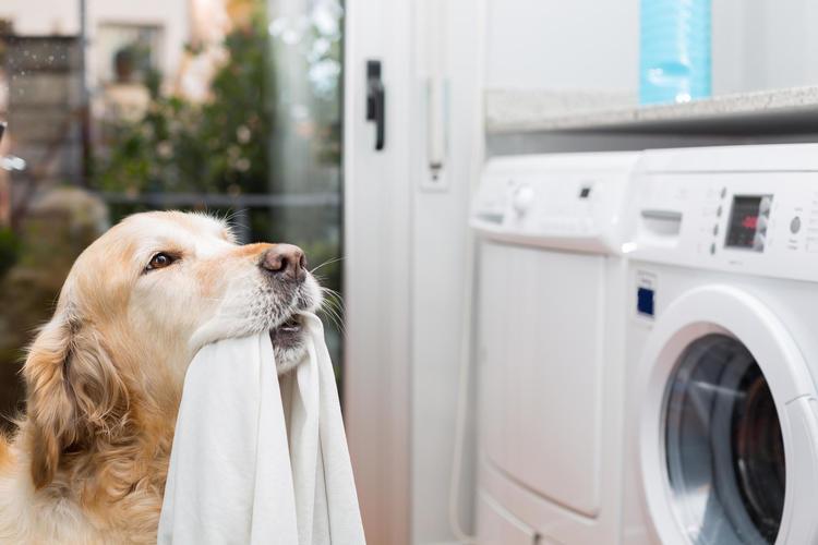 Как выбрать стиральную машину (2018)