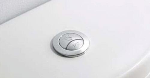 двойная кнопка слива
