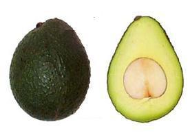 Сорт авокадо Гвен