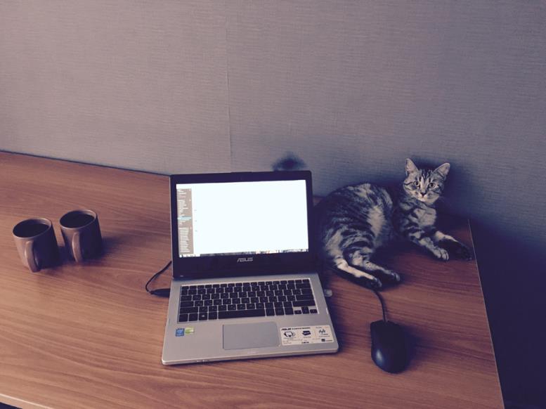 рабочее место с ноутбуком