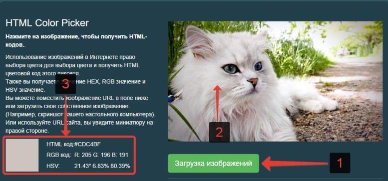 Определение кода цвета пикселя на картинке в онлайн сервисе