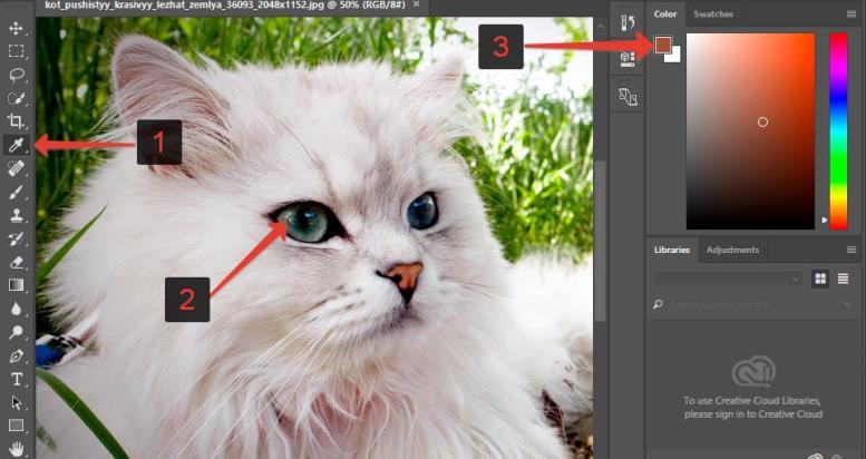 Инструмент пипетка в Фотошоп