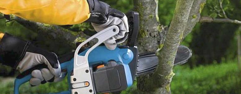 Обрезка деревьев бензопилой